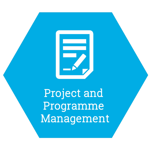 Project and Programme Management